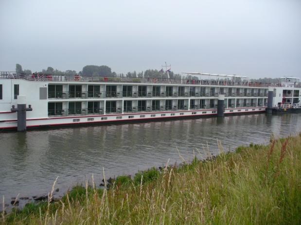 Viking Idi (1)