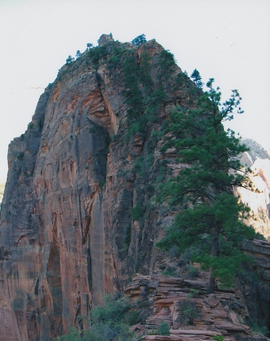 Angels' Landing outcropping