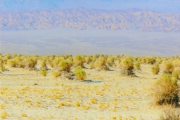 A Photo Journey: Death Valley National Park