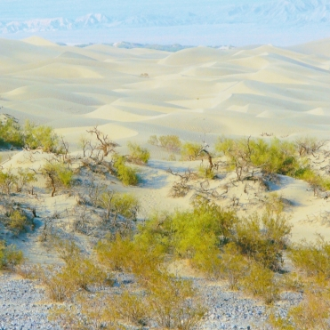 Death Valley Sand Dunes 2
