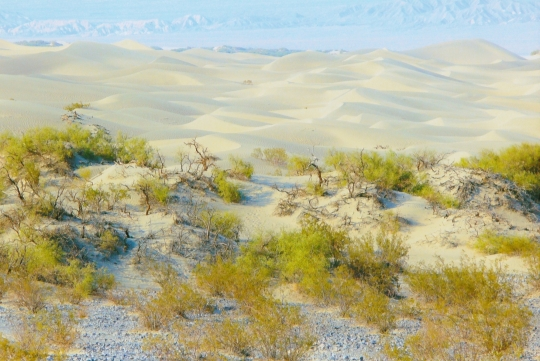 Death Valley Sand Dunes 2