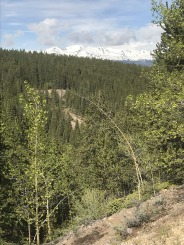 Mineral Belt Trail (11)