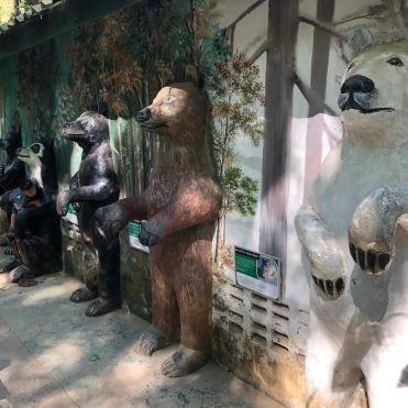 Laos Kuang Si Bear Sanctuary (19)