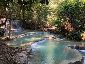 Laos Kuang Si Waterfalls (7)