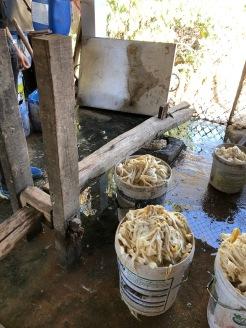 Laos Luang Prabang Artisan Village (3)