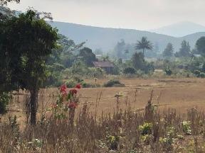 Laos Nong Khiaw Hike (15)