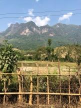 Laos Nong Khiaw Hike (24)
