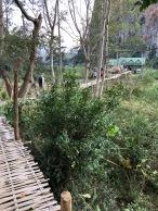 Laos Nong Khiaw Pathet Lao cave (1)