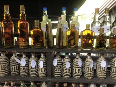 Laos Whiskey Village (1)