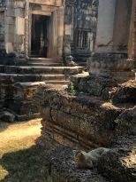 Cambodia Banteay Samre (31)