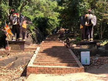 Cambodia Mt Kulen (1)