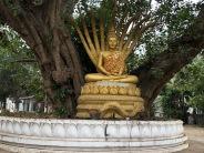 Laos Luang Prabang (51)