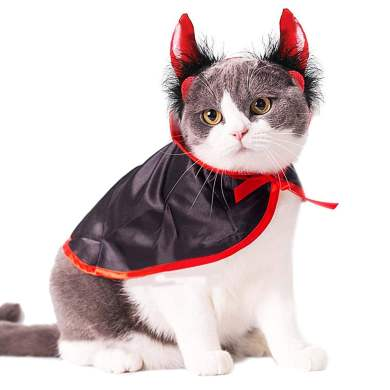 Devil-Cat-Costume