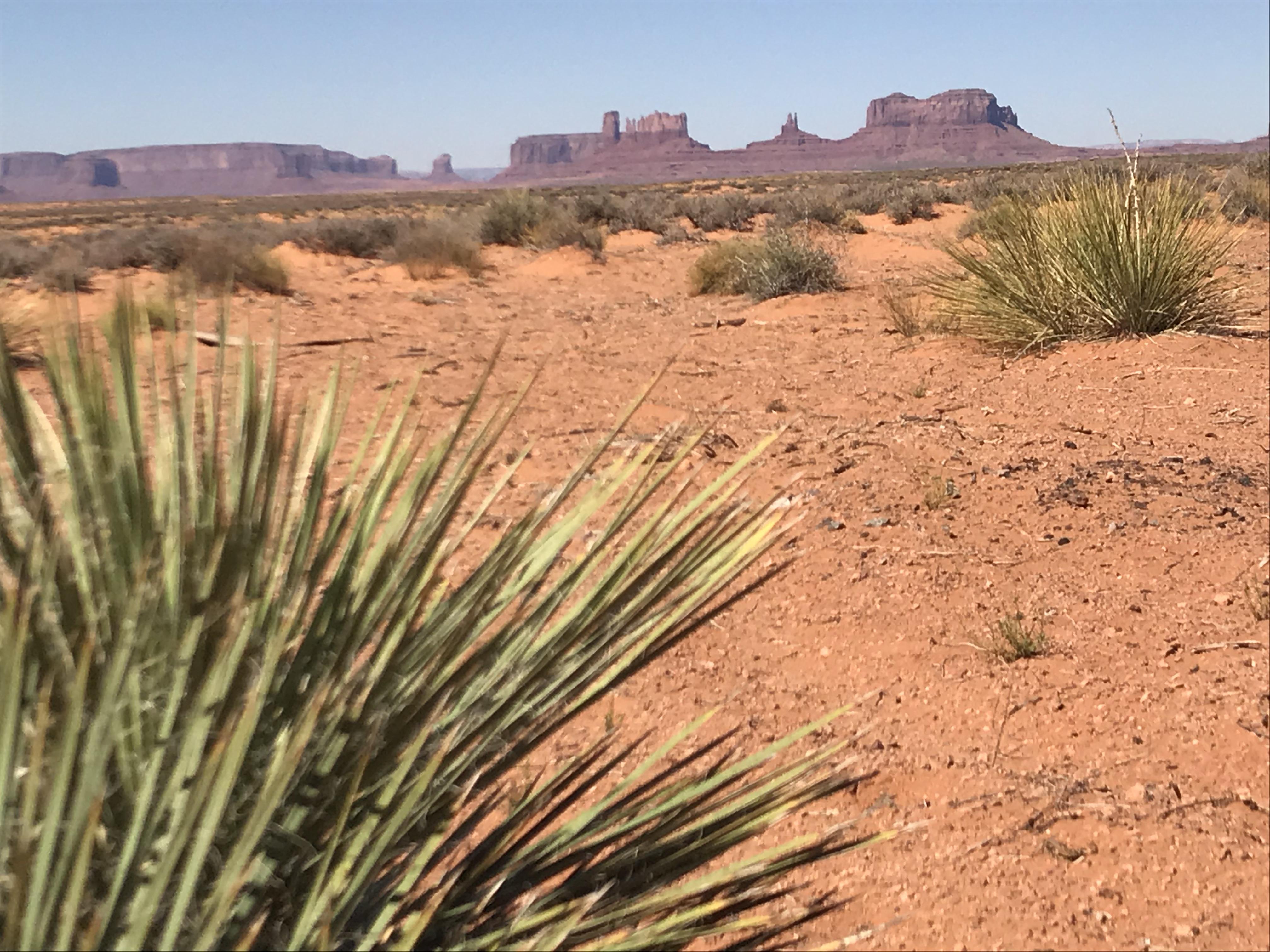 Monument Valley region (38)