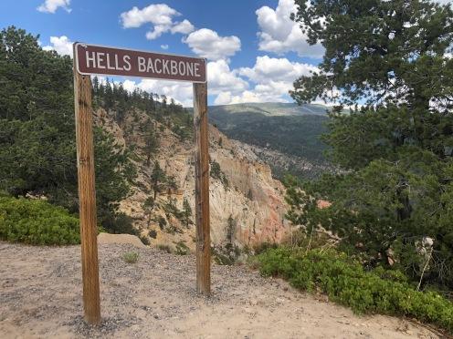 Utah, Hell's Backbone Scenic Loop Road (26)